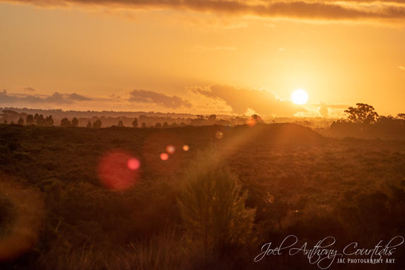 Cannons Creek Sunset