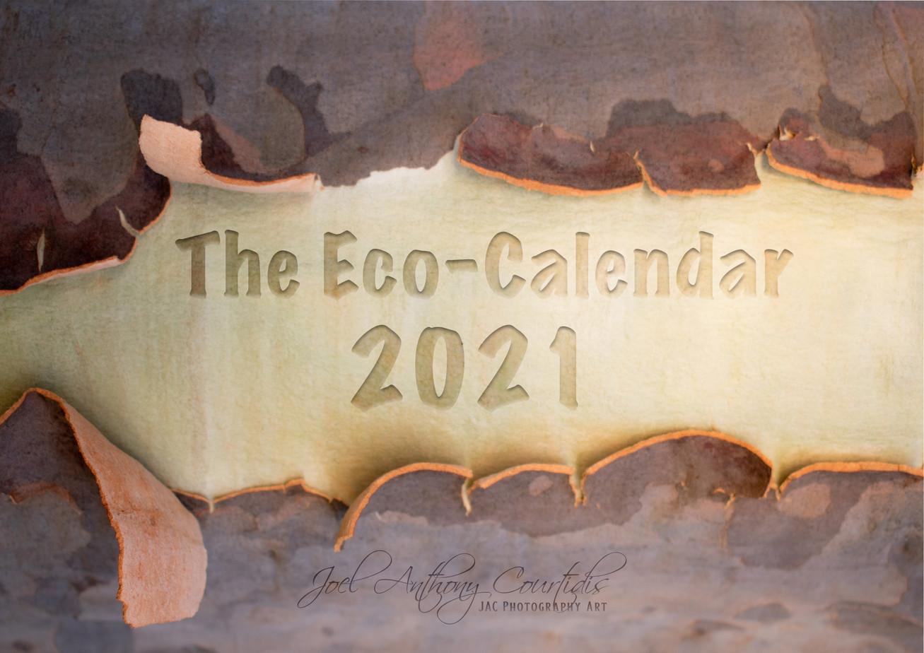 2021 Calendar Front Cover.jpg