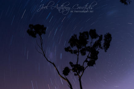 Star Trails Ghost Gum