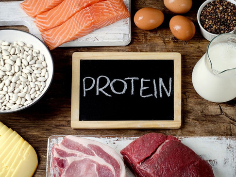 The Dangers of a High Protein Diet