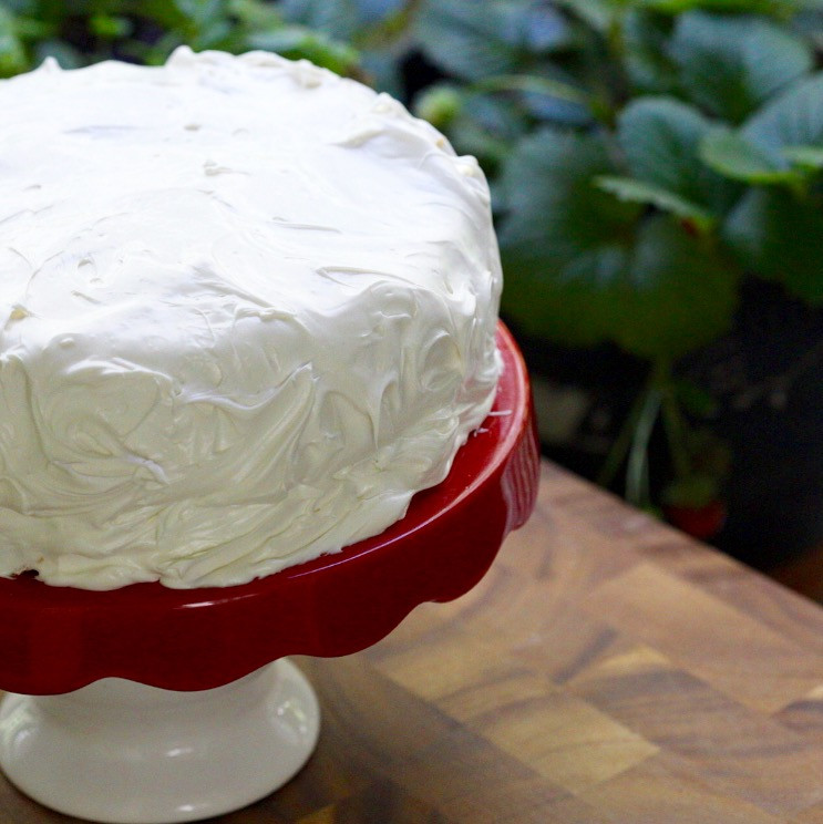 Frosted White Cake