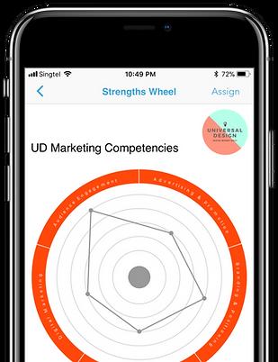 MasterCoach Strengths Wheel