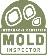Mold(Chroma).png