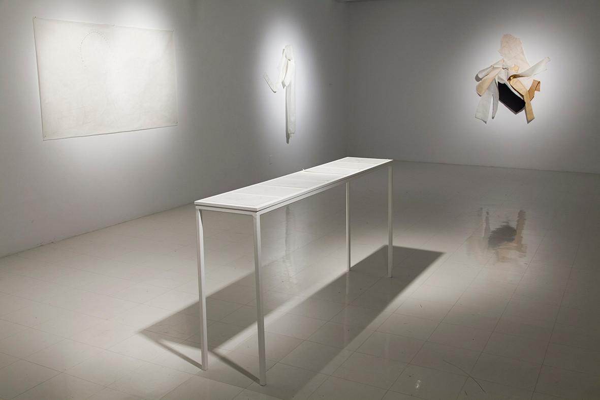 Galerie des arts visuels, Québec, 2014