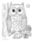 OWL COLORING PAGE.png