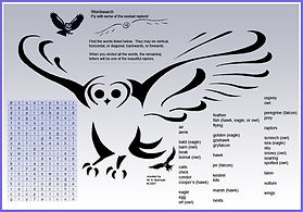 owl word search.jpg