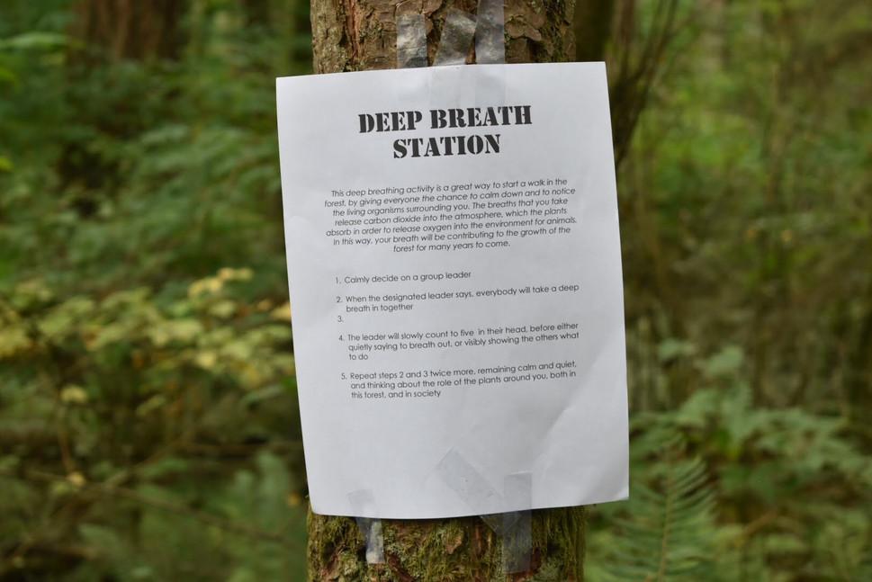 Deep Breath Station