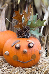 Nature-Pumpkin-image.jpg