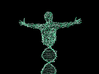Sabías que los genes están sujetos a interruptores que los encienden y apagan alterando el fenotipo?