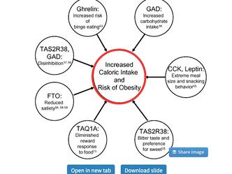 Como influye la genética en nuestro comportamiento alimentario