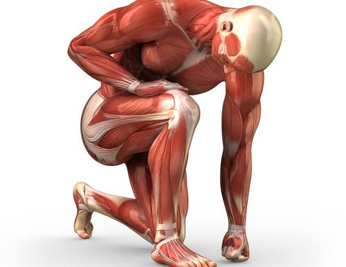 Para una mejor recuperación del ejercicio