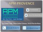 V1 APM copie.png