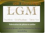 V8 LGM.png