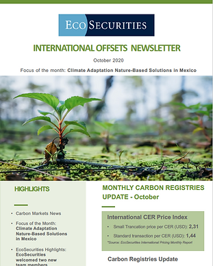 EcoSec_Cover_NewsletterOct20.png