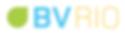 logo_BVRio_HR.png