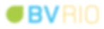 logo_BVRio_HR.png