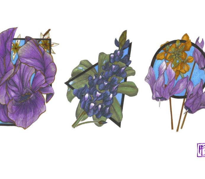 מתן נעמני, פרחי אביב הדפס דיגיטלי, 42X30