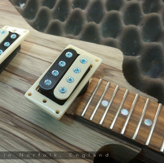 Belmuse Exporer 4 String Build