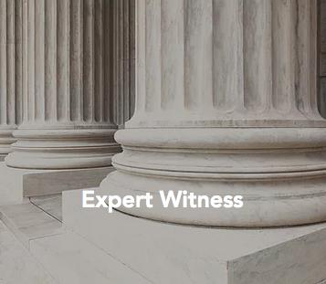 Expert Witness Consultation