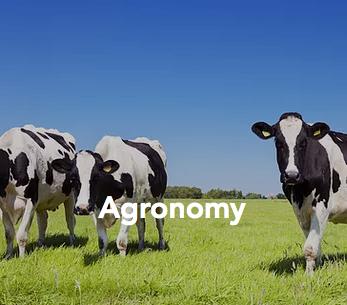 Agronomy Consultation
