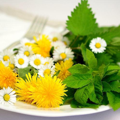 Erbe Spontanee: riconoscerle, raccoglierle e usarle in cucina