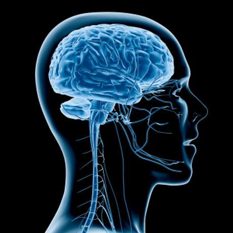digital-brain-injury_129.jpg