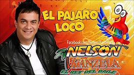 midis y karaokes - El Pájaro loco - Nelson Kanzela