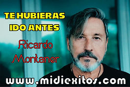 Te hubieras ido antes - Ricardo Montaner