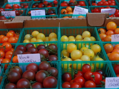 Cherry-Tomato-Tomatoes-In-A-Basket-Farme