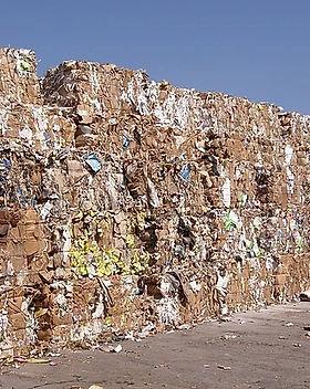 Waste Carton & Paper Application.jpg