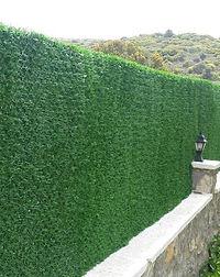Grass Fences (2).jpeg