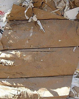 Waste Carton & Paper.jpg
