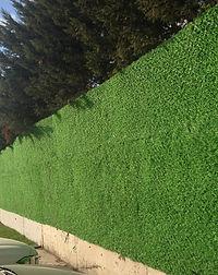 Grass Fences (20).jpeg