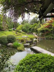 Beautiful Zen Gardens
