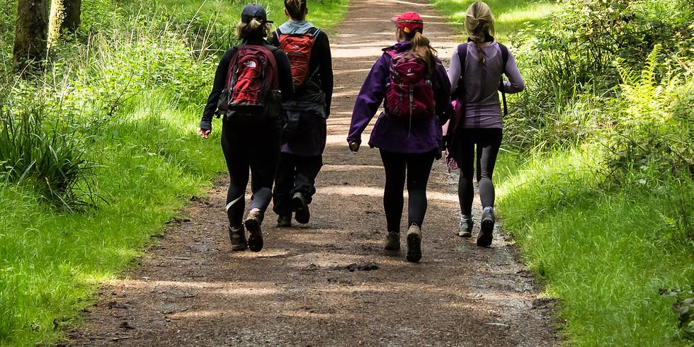 Wellness Adventure Cadamstown, Co. Offaly