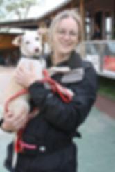 dog training, Tonbridge Kent