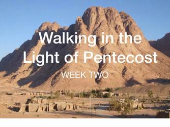 Our Redeemer is a Teacher (Week 2 of 7)