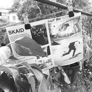 skaid wonderfool magazine_edited.jpg