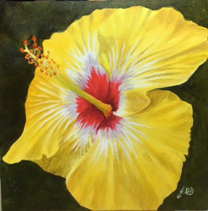 New Artwork Title     Hibiscus I_1