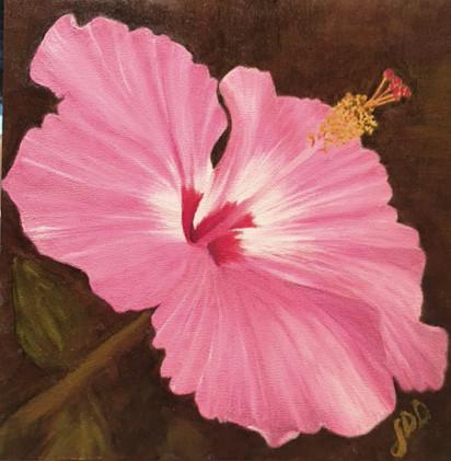 New Artwork Title     Hibiscus III_1