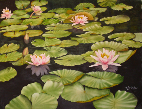 New Artwork Title     Lily Pond_1