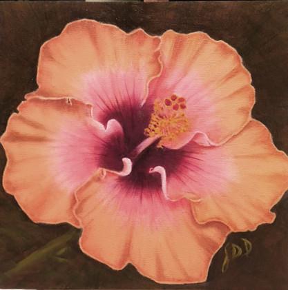 New Artwork Title     Hibiscus II_1