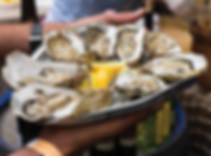 UOF oysters.PNG