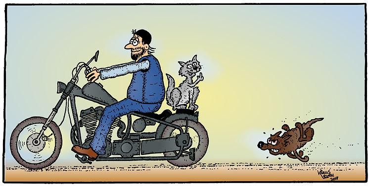 1.Hund-u-Katz_color.jpg