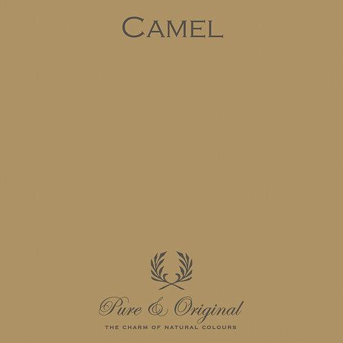Camel Carazzo