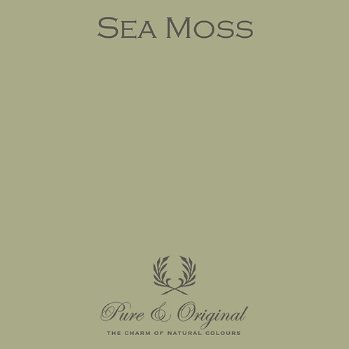 Sea Moss Carazzo