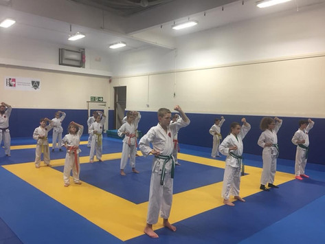 Junior grading at AKA November 2018