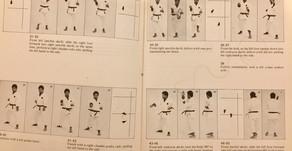 Gekisai Di Ichi & Di Ni: Hip position