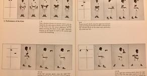 Gekisai Di Ichi & Di Ni: Jodan Age Uke and Han Zenkutsu Dachi