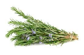 Rosemary Essential Oil (Rosmarinus Officinalis)
